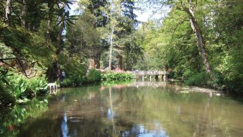 Bodnant Garden Water and Flood Management (2017)
