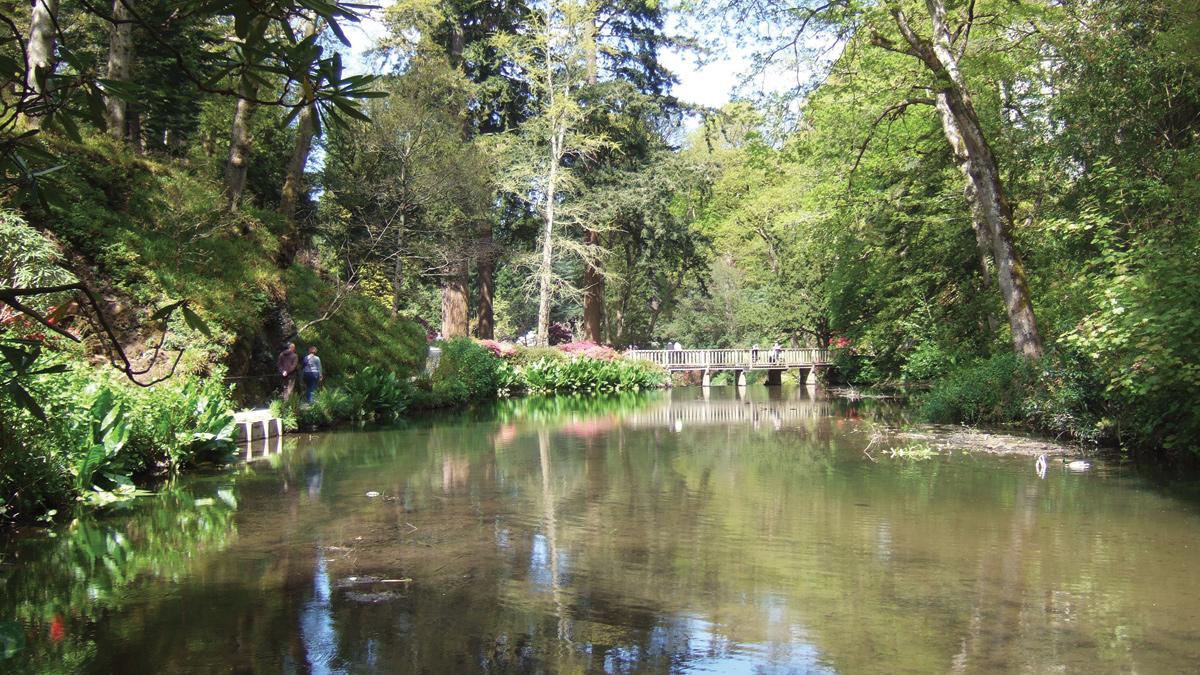Bodnant Garden Water and Flood Management (2017)