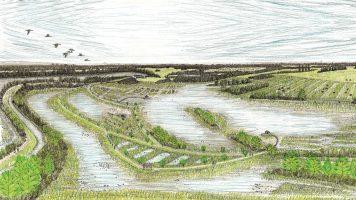 River Thames Scheme (2018)