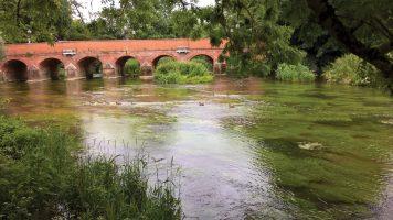 Thames Water UPM Scoping Studies (2018)