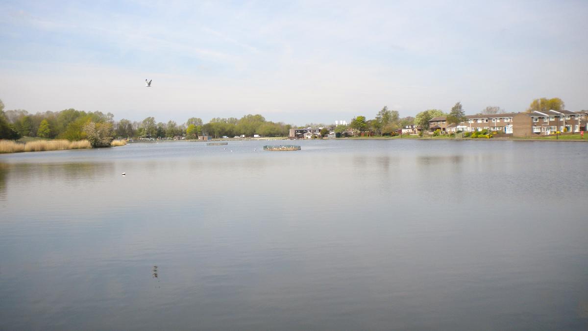 Killingworth & Longbenton Water Management Ph 3 (2019)