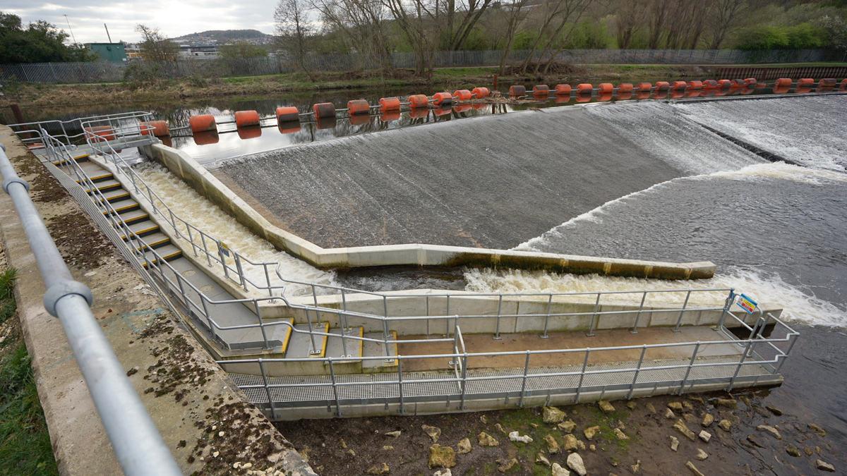 Jordans Dam and Wharncliffe Fish Passes (2019)